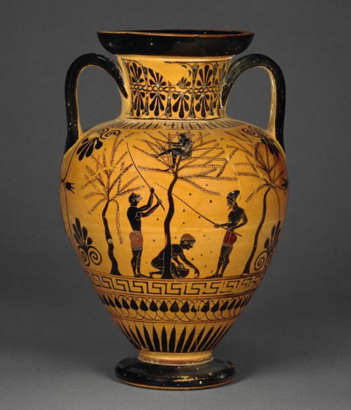 Greek vase depicting the olive harvest